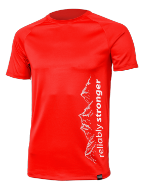 Moška funkcijska majica MOUNTAIN